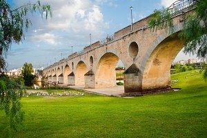 Palms Bridge