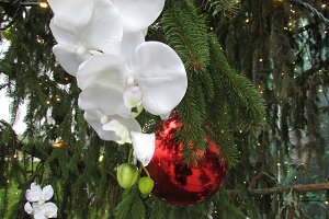 Orchid Christmas Decoration