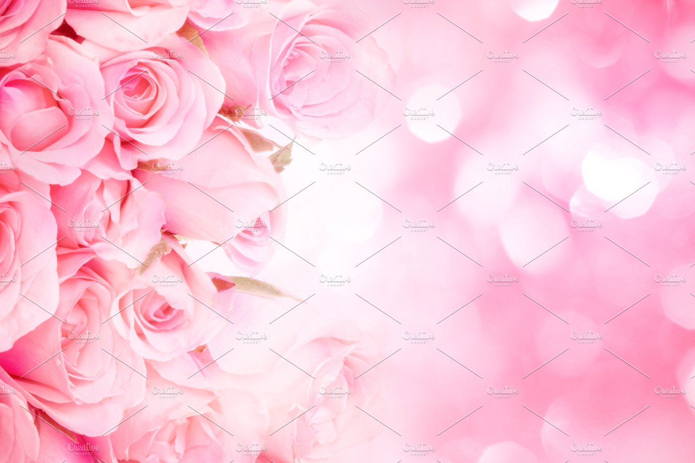 Sweet Pink Rose Background