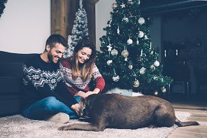 Young couple petting dog on carpet