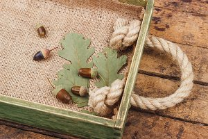 Tray with autumn decorations from acorns