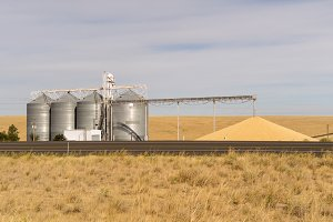 Grain storage silos with conveyor
