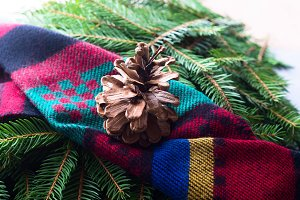 Fir tree branches winter mood with scarf and pine cones