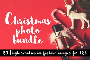 25 Festive photography bundle