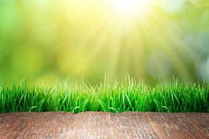 wooden floor with green grass