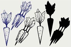 Carrot SVG