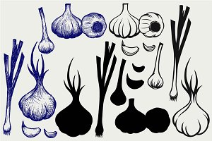 Heads of garlic SVG