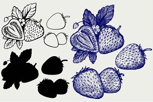 Strawberries SVG