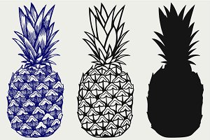 Ripe pineapple SVG