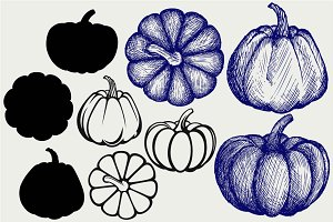 Pumpkins SVG