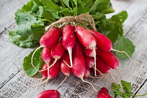 Fresh bunch of radishes