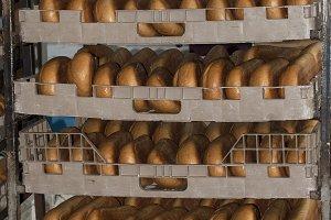 Hot loaves in racks