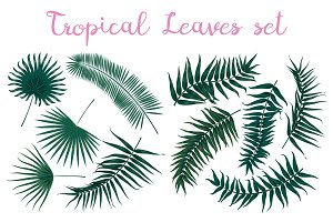 set of 10 tropical leaves
