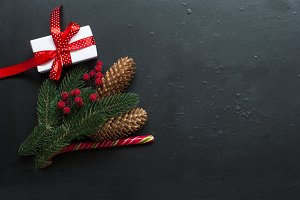 Christmas background branches