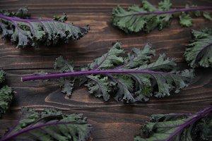 Purple Kale on Dark Wood Background