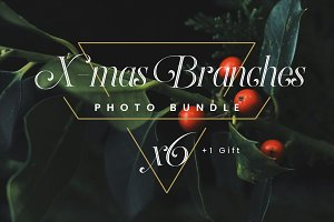 X-mas Branches // Photo Bundle