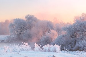 Winter sunrise in forest