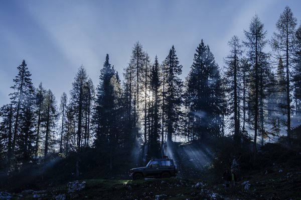 Dark and Gloomy Sunrays in Forest