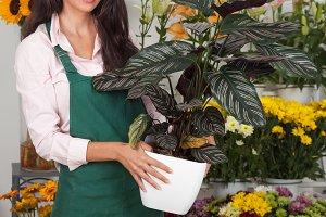 Florist holding plant