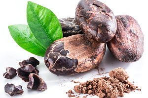 Cocoa beans isolated