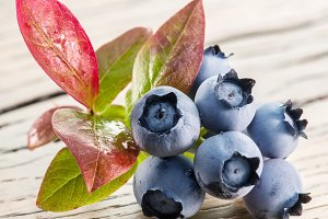 Ripe blueberries on the wood