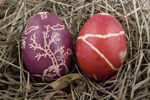 Coloured Eggs in the Nest