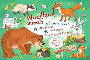 Cute woodland animals bundle