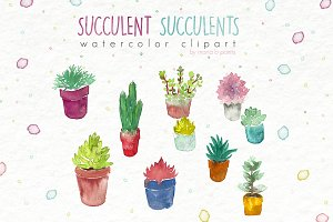 Watercolor clipart: succulents plant