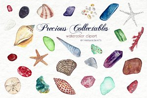 Watercolor Clip Art - Shells, Stones