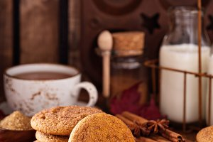 Cinnamon snickerdoodle cookies