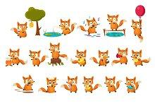 Fox Activities