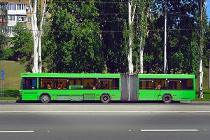 Green city bus stops in city