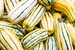 Delicata squash on display