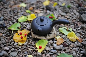 Chinese teapot for tea ceremony