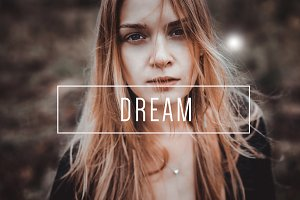 Dream LR Preset [Indie Muse]