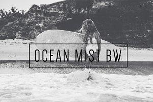Ocean Mist BW LR Preset  Indie Muse