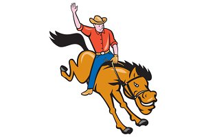 Rodeo Cowboy Riding Bucking Bronco C