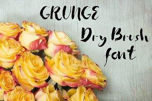 Grunge dry brush font