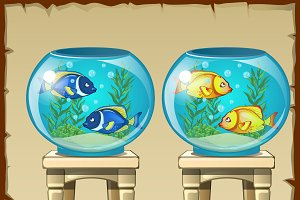 Two aquariums with fish