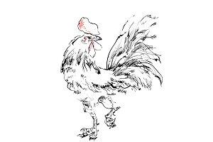Cock sketch. New year 2017 symbol