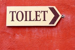 Toilet guidepost