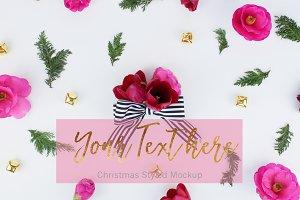 Christmas Photo (21)