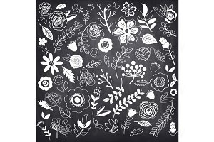 Chalkboard Hand Drawn single Flowers