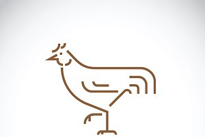 Vector of a chicken design.