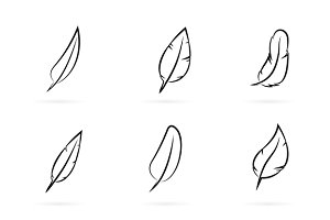 Vector group of feathers.