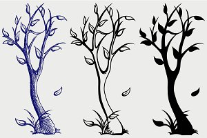 Trees with deciduous SVG