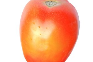 Tomato vegetables transparent PNG