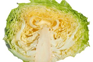 Cabbage transparent PNG