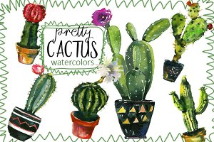 Pretty Cactus Watercolor Clipart Set