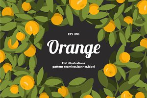 A set of labels with oranges fruits